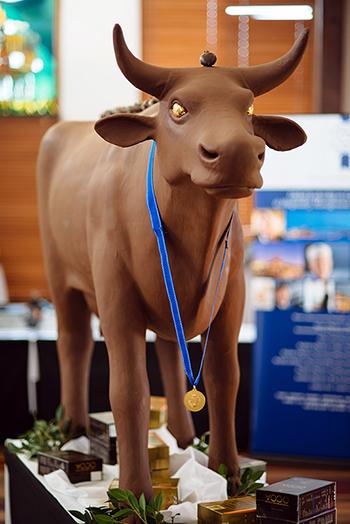 cow-350.jpg