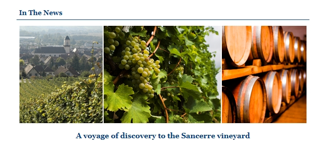A voyage of discovery to the Sancerre vineyard.jpg